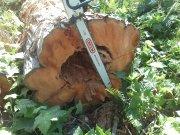 440 hybrid logs 081.jpg