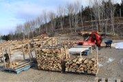 20191208-firewood-processing-1.jpg