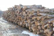 20191208-firewoodpile.jpg