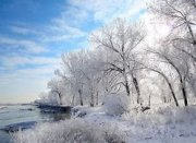 Image result for Morning Frost