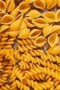 Image result for image buy pasta spiral log shell