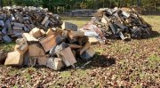 Woodpile 1.jpg