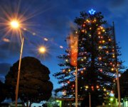 frankston-festival-of-christmas-lights2.jpg