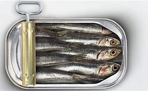 Image result for image sardines in tins