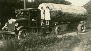 biglogontruck-c1930-Kauri-log-near-Thames-New-Zealand-800x456.jpg