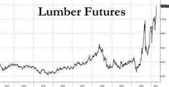 lumber futures.jpg