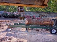 20210612-sawmilling-hemlock-gina.jpg