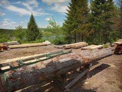 20210617_123258-sawmilling-view.jpg
