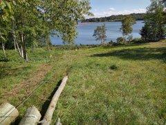 20210911_155355-hauling-oak-logs-2.jpg