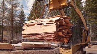 20210511-firewood-slabs-bundled.jpg