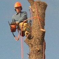 crotchclimber