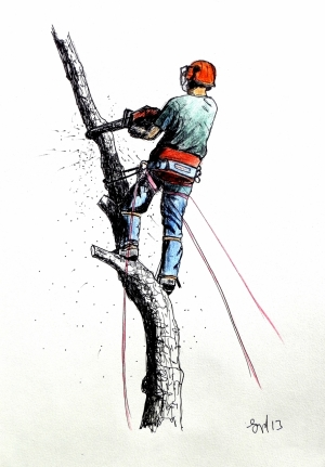 Arborist art paintings Stihl