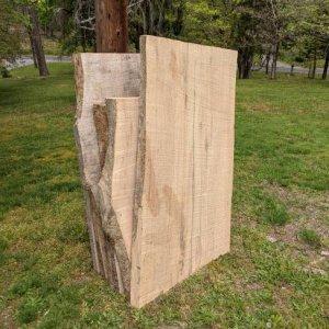Ash slabs shorter_3.jpg