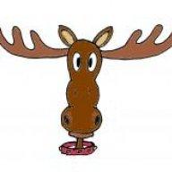 Tamed Moose