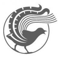 Lyrebird_Cycles