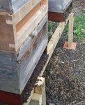 heatherbees1 (832x1024).jpg