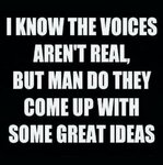 voices in my head.jpg