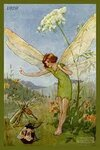 The fairy and the bee.jpg