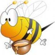 New Bee 2