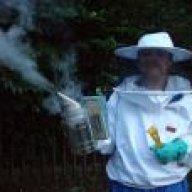 Bees aloud