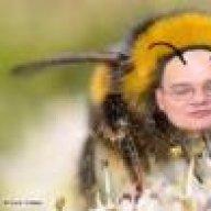 Chorlton Honey Bees