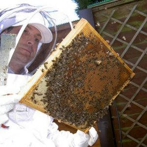 Me and some of the bees
