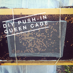 push in cage