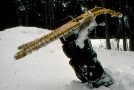 winter trek, Sylvania.jpg