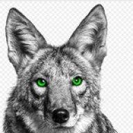 Lonecoyote