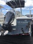SEAsaw.jpg