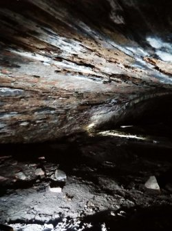 Tunnel 3 woodlined.jpg