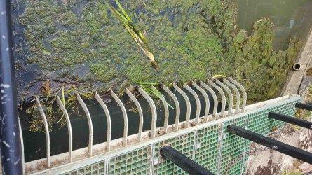 Thre bridges Mill Stream 717.jpg