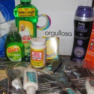 ~Vocalpoint/Orgullosa party by Proctor & Gamble~ Unstopables, Gain apple dish washing liquid, Tide to Go pen, Oral B Electric brush, paper towels, Mod