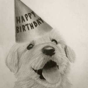 Happy_Birthday_Puppy_by_alahala.jpg