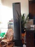 ML - Speaker pic.jpg