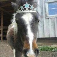 horse_apples