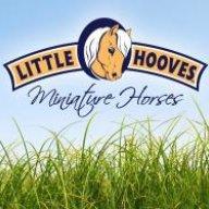 Little Hooves