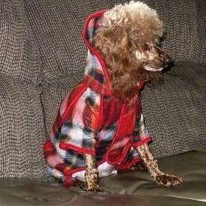 Peachie modeling  her new coat