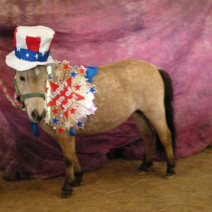 Echo Jubilee Poses for 4th of July