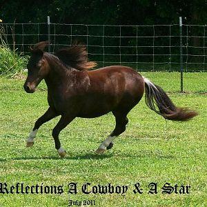cowboyrunnn711.jpg