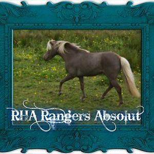 RHA Rangers Absolut