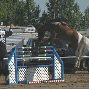 Catman jumping weeeee l made it