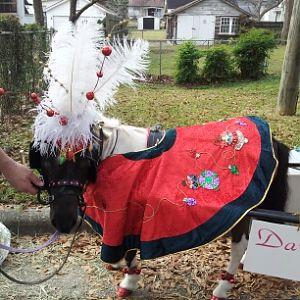 oreo's christmas parade