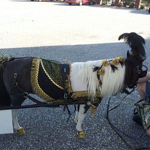 oreo's homecoming parade