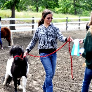 Angels for Minis and Walnut Creek Equestrian Center Mini Schooling Show with Rescue Minis and Volunteers