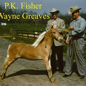 56Mr Fisher Wayne Greaves