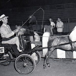 1954 greeley reaper
