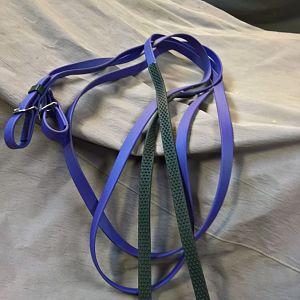 Purple reins Min