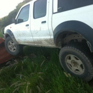 stock rear flex