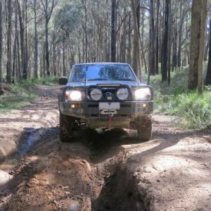 First trip out to Wombat again after new lights, winch and GME and dog cage installed
